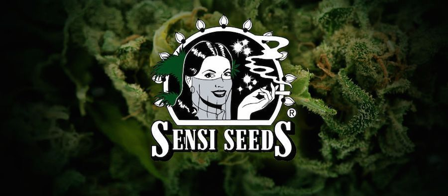 code de rabais sensi seeds