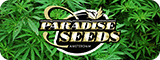 paradise seeds cannabis
