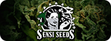sensi seeds bank Amsterdam