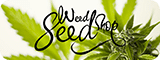 weed seed shop cannabis