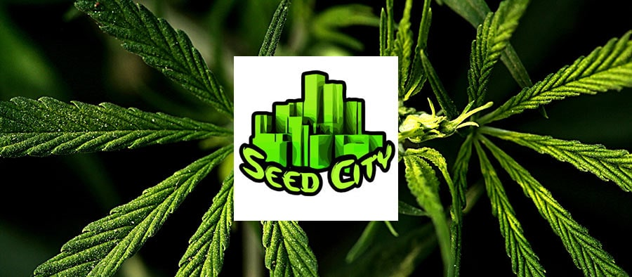 code de réduction seed city cannabis